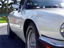 Picture of '92 XJS - G8Z0