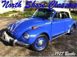 1977 Volkswagen Beetle for Sale - CC-758886
