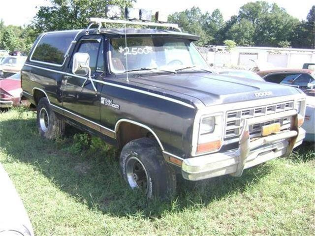 1984 Dodge Ramcharger | 761593