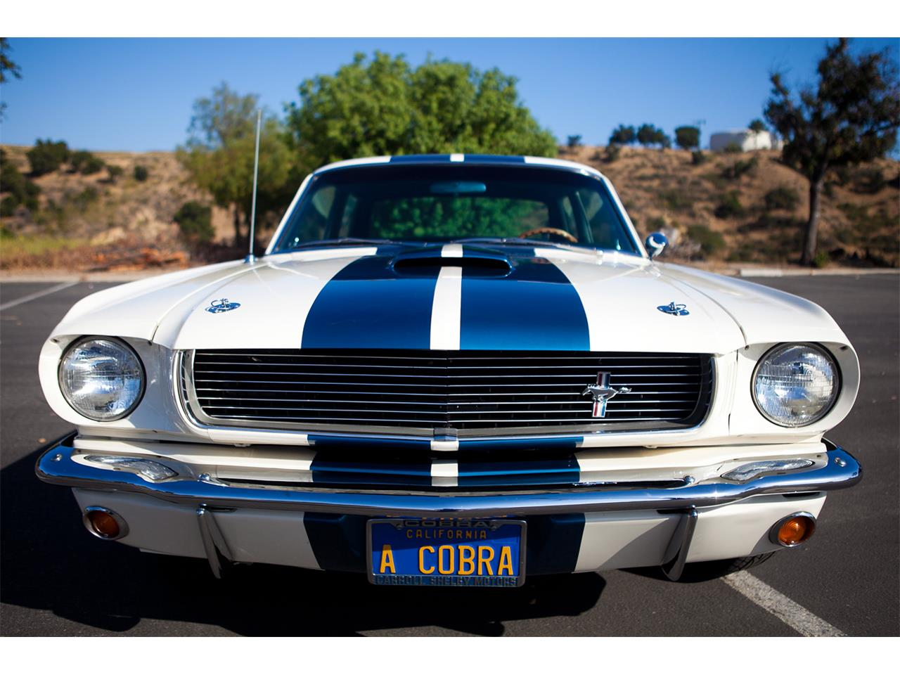 1966 Ford Mustang Shelby GT350 for Sale | ClassicCars.com | CC-765396