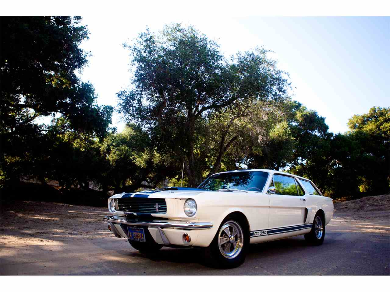 1966 ford mustang shelby gt350 for sale cc 765396. Black Bedroom Furniture Sets. Home Design Ideas