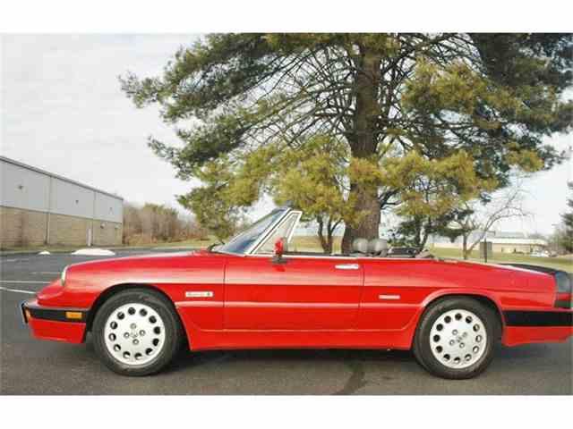 1988 Alfa Romeo Quadrifoglio | 769924