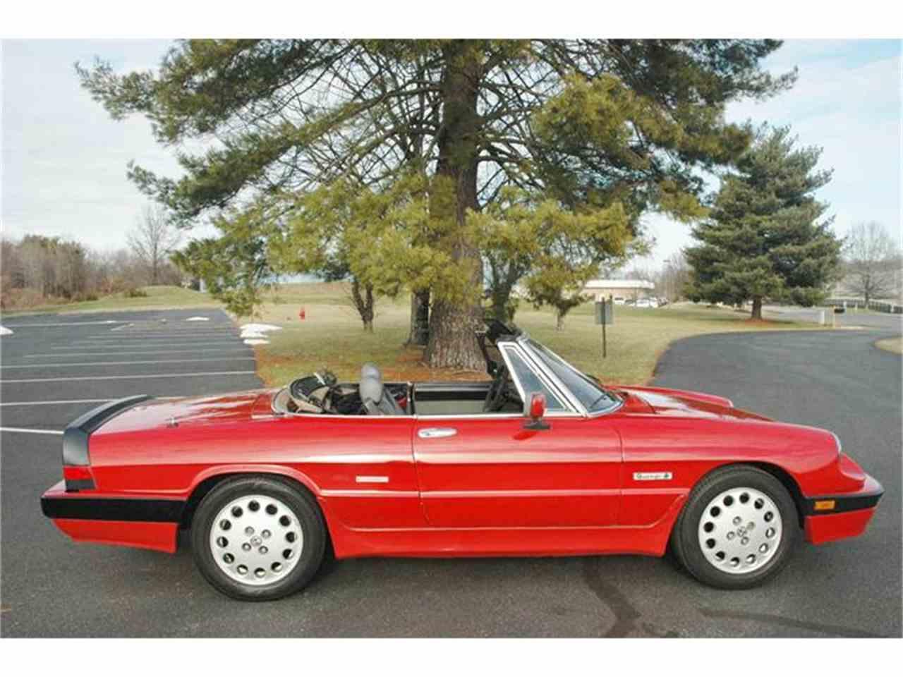 CA 1988 Alfa Romeo Spider Quadrifoglio $8000 - ClubLexus ...  |1988 Alfa Romeo Quadrifoglio