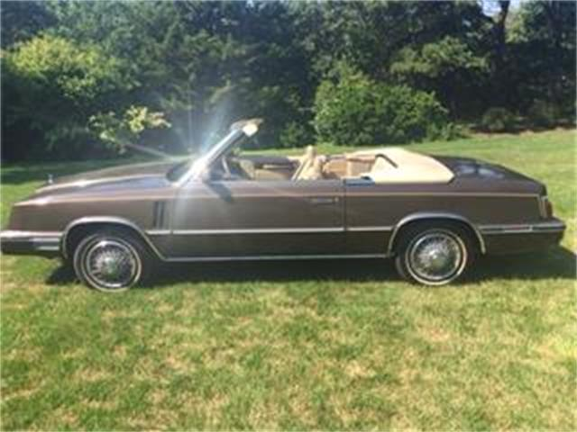 1984 Dodge 600 Series | 773837