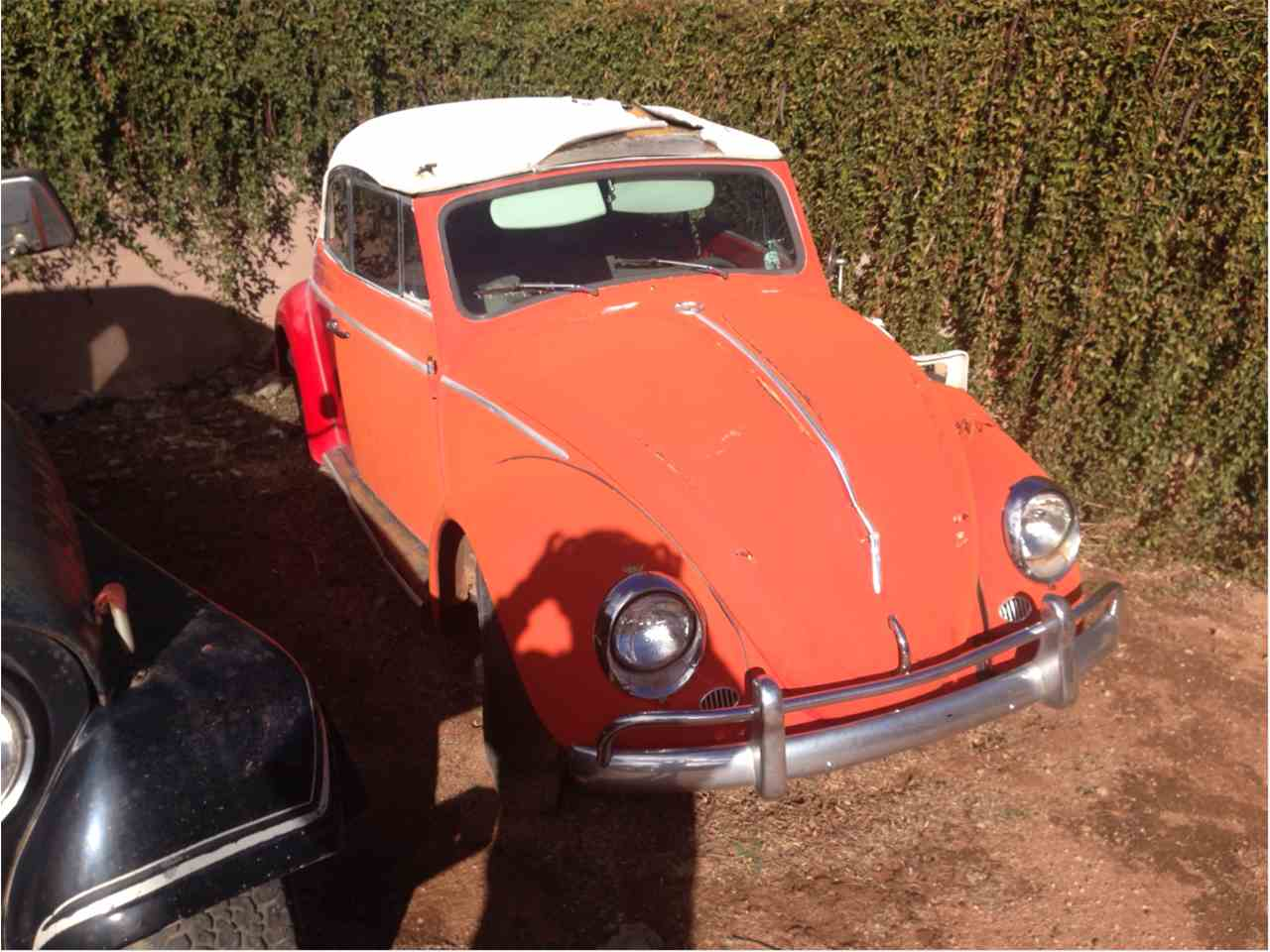 1963 Volkswagen Convertible for Sale - CC-774680