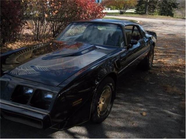1981 Pontiac Firebird | 779070