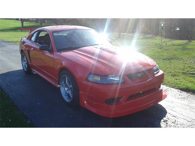 2000 Ford Mustang Cobra | 782210