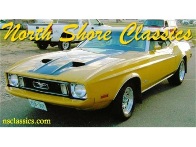 1973 Ford Mustang | 786054