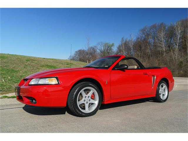 1999 Ford Mustang Cobra | 789421