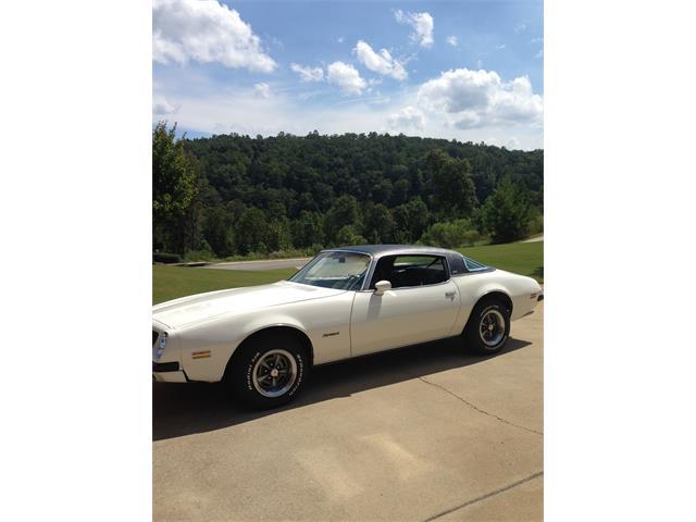 1975 Pontiac Firebird | 794296