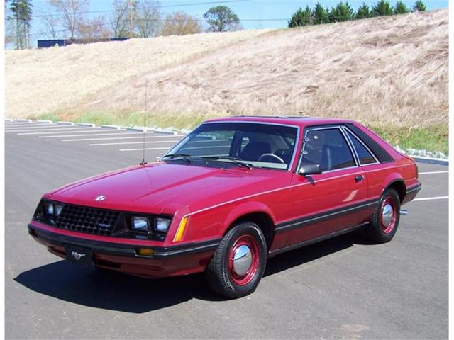 1981 Ford Mustang | 795371