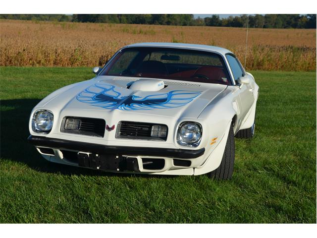 1975 Pontiac Firebird Trans Am | 796024