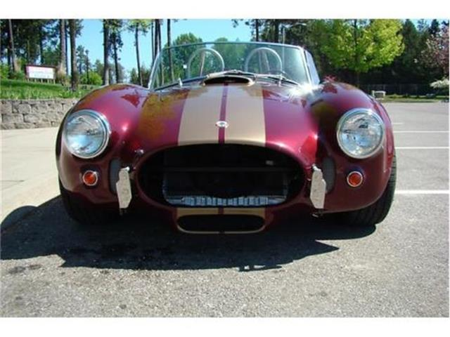 1966 Shelby Cobra Replica | 798790