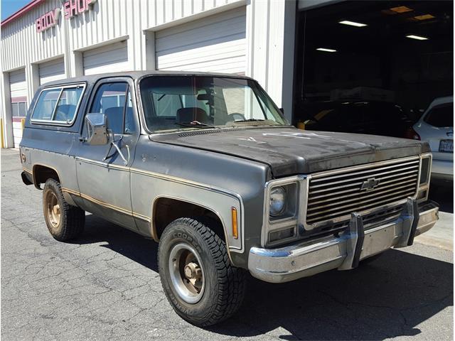 1979 Chevrolet K5 Blazer | 806231