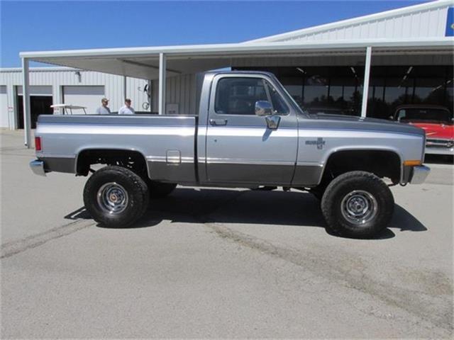 1987 Chevrolet Pickup | 806607
