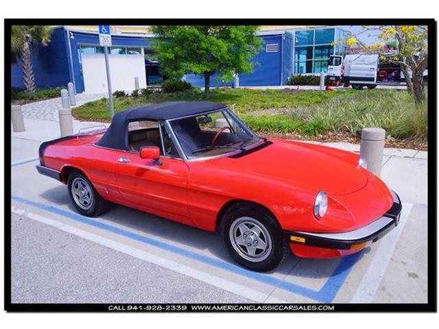 1984 Alfa Romeo Spider | 809375