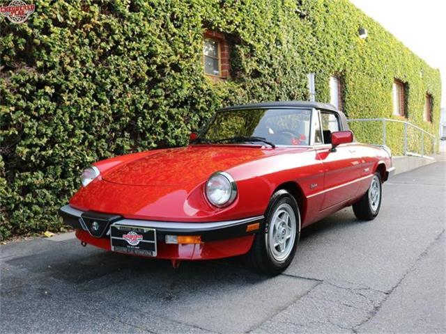 1988 Alfa Romeo Spider | 812912