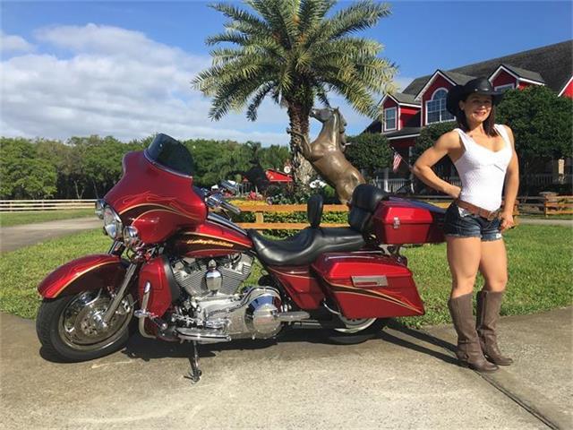 2005 Harley-Davidson Electra Glide | 814508