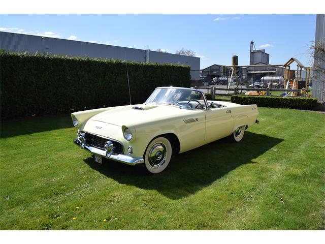 1955 Ford Thunderbird | 815870