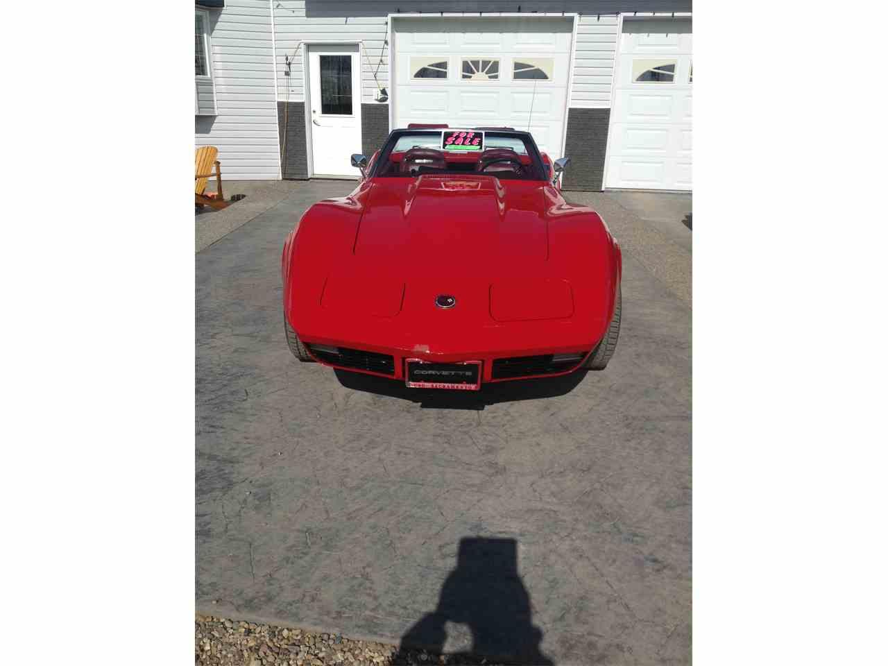 Large Picture of '73 Corvette - HP0D
