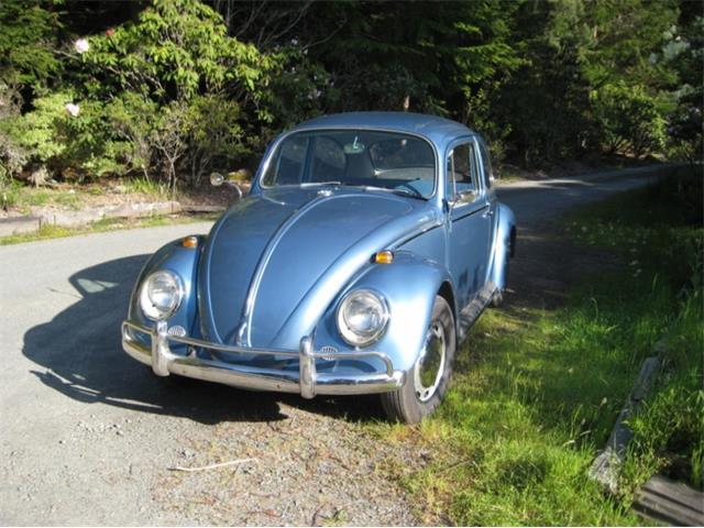 1966 Volkswagen Beetle | 826712