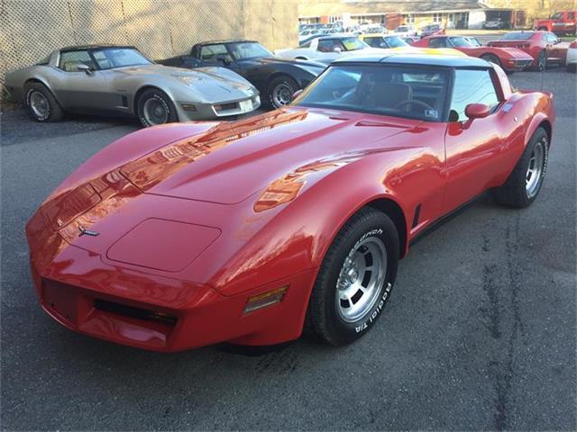 1981 Chevrolet Corvette | 827939