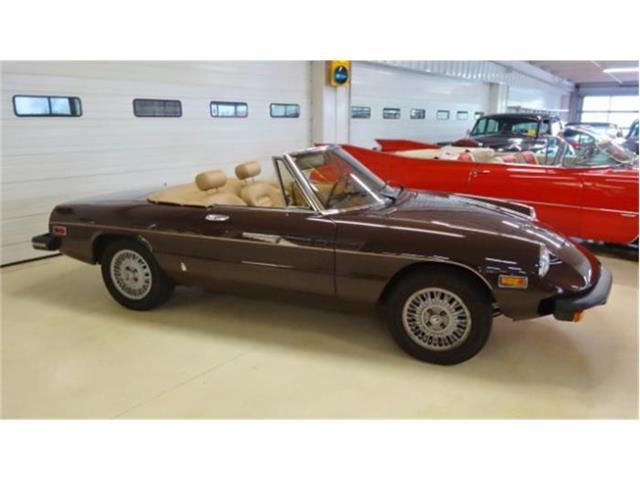 1979 Alfa Romeo Spider | 835390