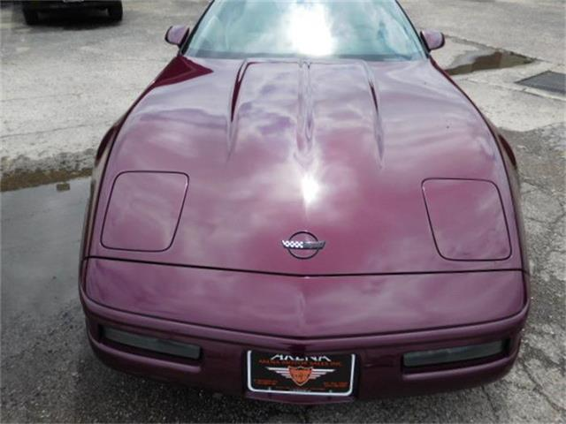 1996 Chevrolet Corvette | 839416