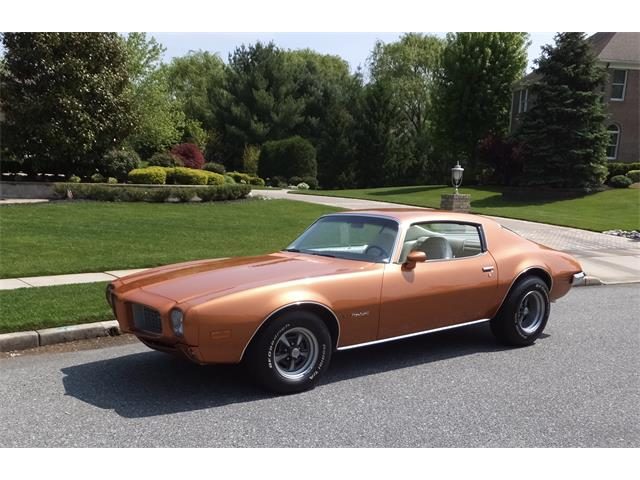 1973 Pontiac Firebird | 846430