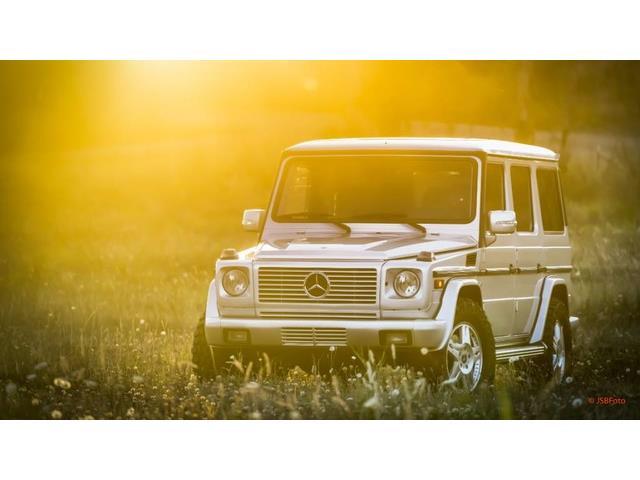 2004 Mercedes-Benz G500 | 846681