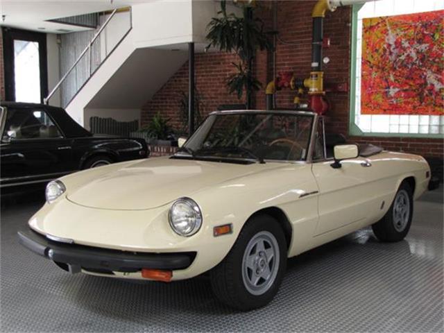 1982 Alfa Romeo Spider | 849281