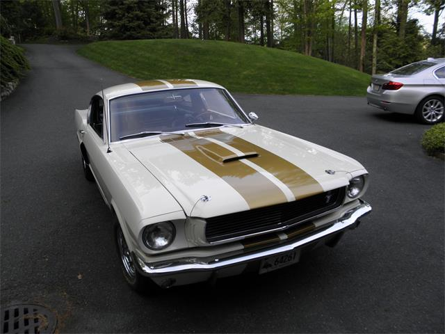 1966 Shelby Mustang | 852603