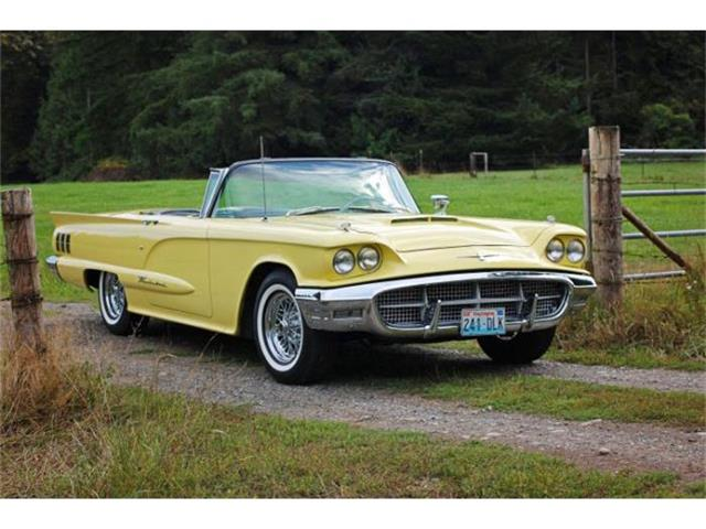 1960 Ford Thunderbird | 858866