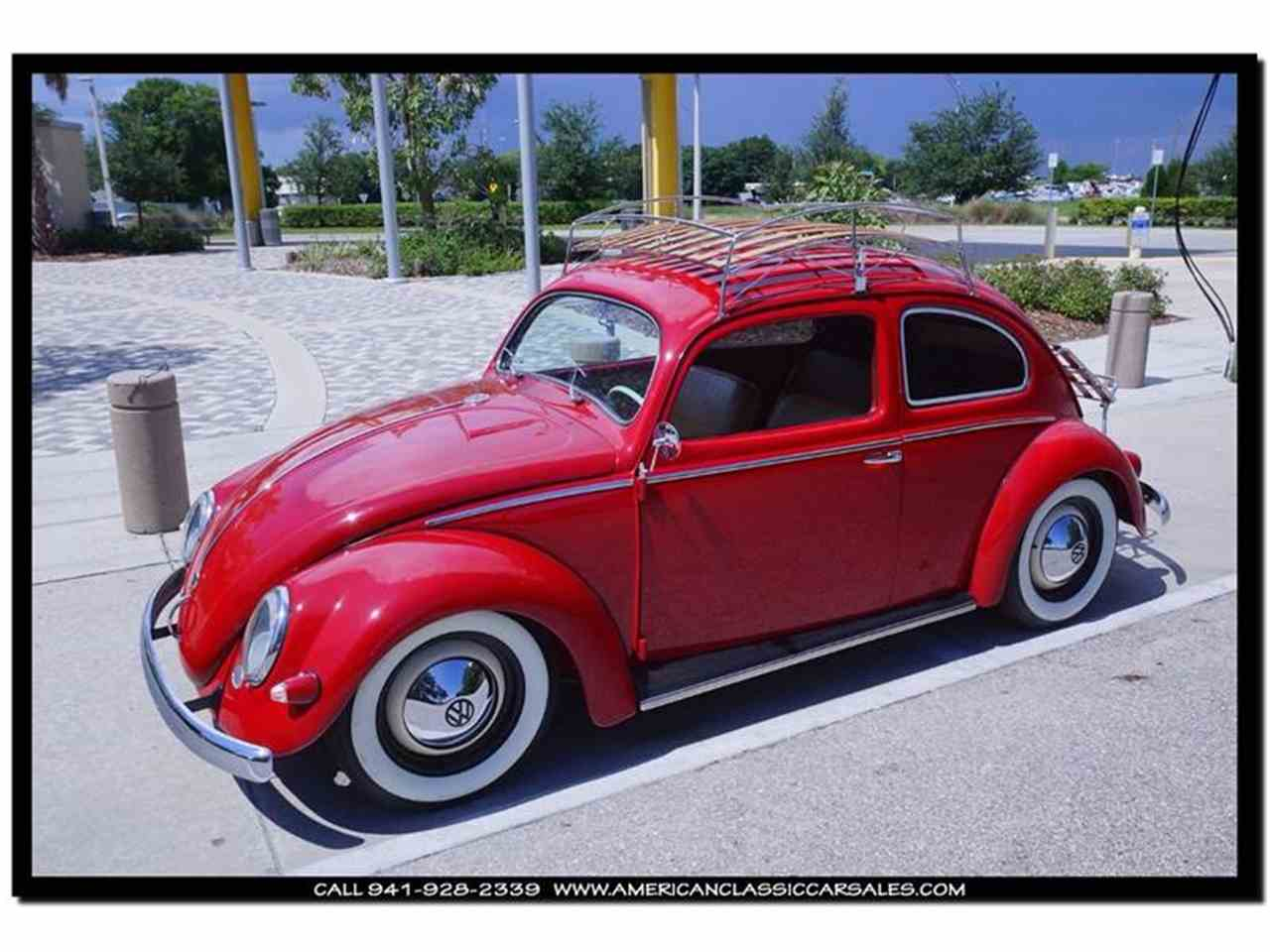 1955 volkswagen beetle for sale cc 867920. Black Bedroom Furniture Sets. Home Design Ideas
