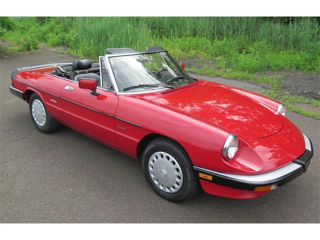 1988 Alfa Romeo Spider | 874175