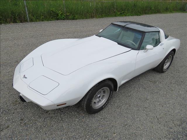 1979 Chevrolet Corvette | 875726