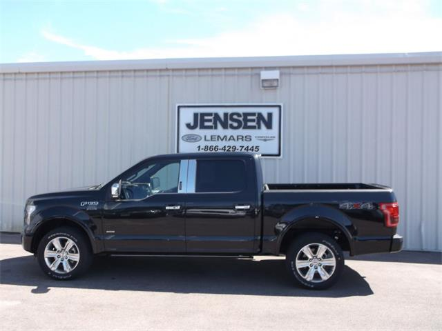 2015 Ford F150 | 876160