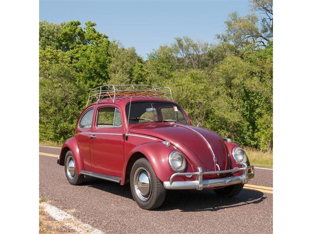 1961 Volkswagen Beetle | 876446