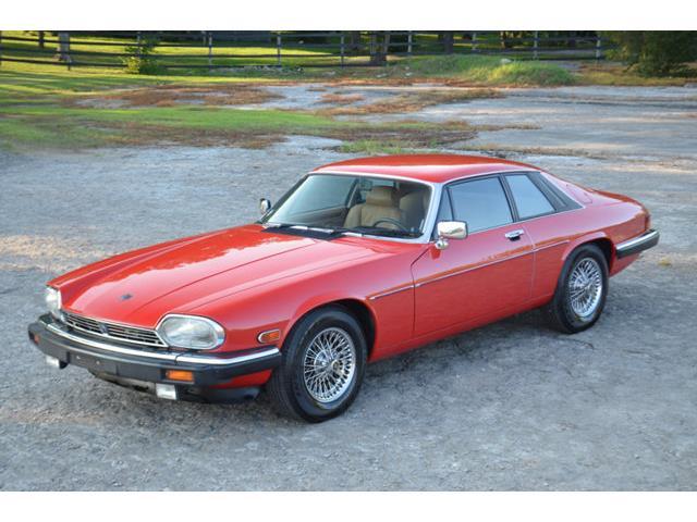 1986 Jaguar XJS | 877441