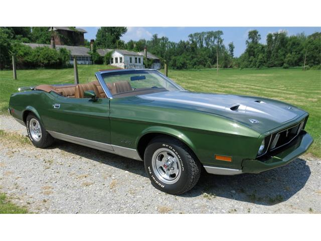 1973 Ford Mustang | 877597