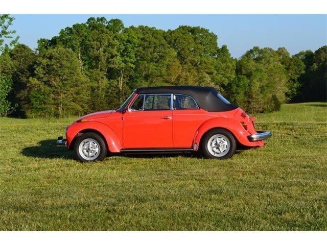 1979 Volkswagen Beetle | 877903