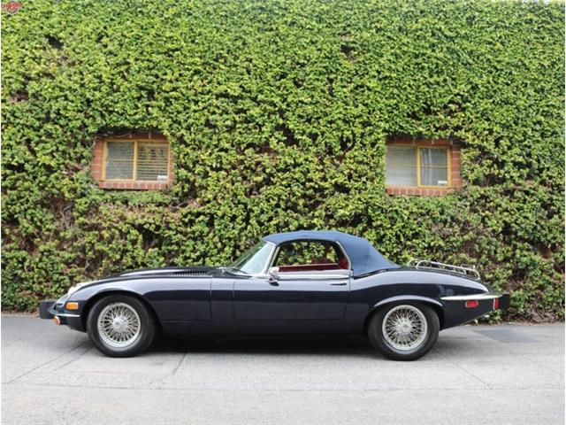 1974 Jaguar E-Type | 877994