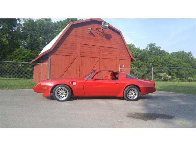 1981 Pontiac Firebird | 878072