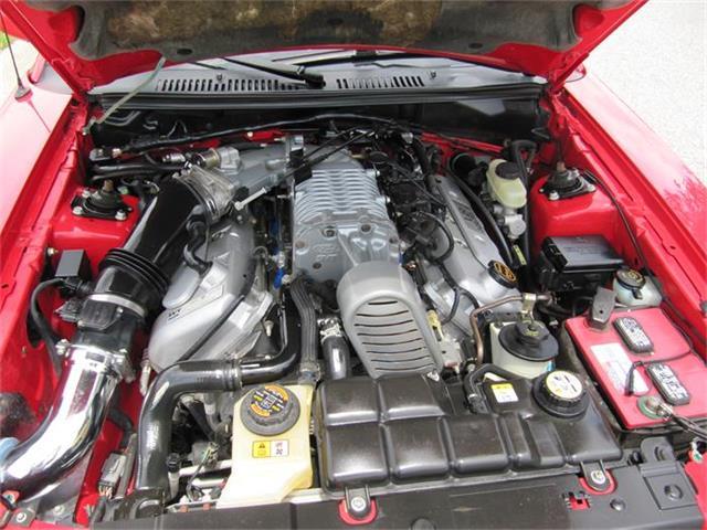 2003 Ford Mustang SVT Cobra | 878213