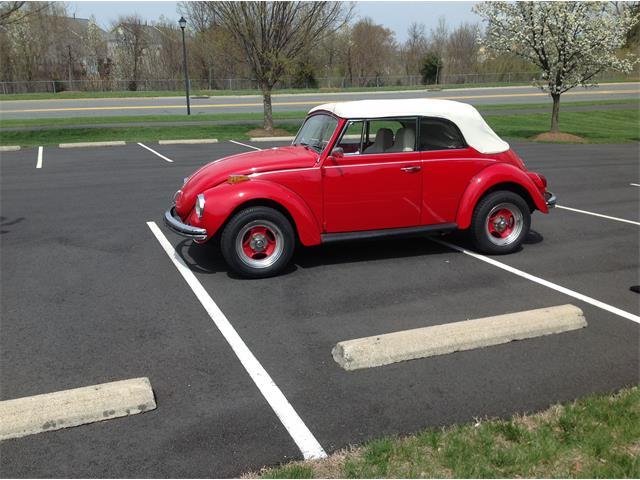 1971 Volkswagen Super Beetle | 878651