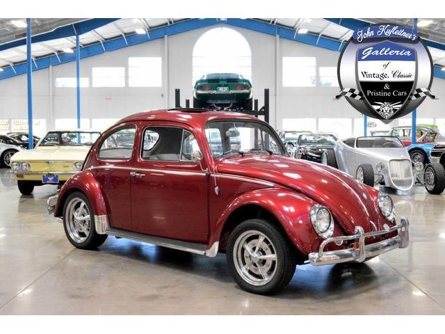 1964 Volkswagen Beetle | 879219