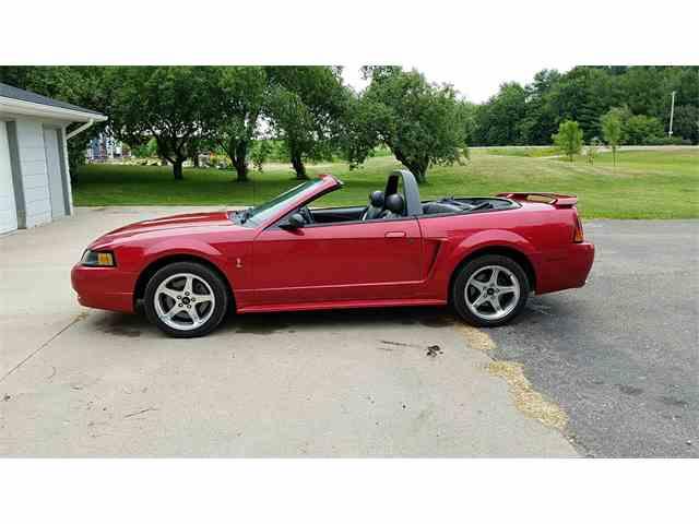 2001 Ford Mustang Cobra | 879406