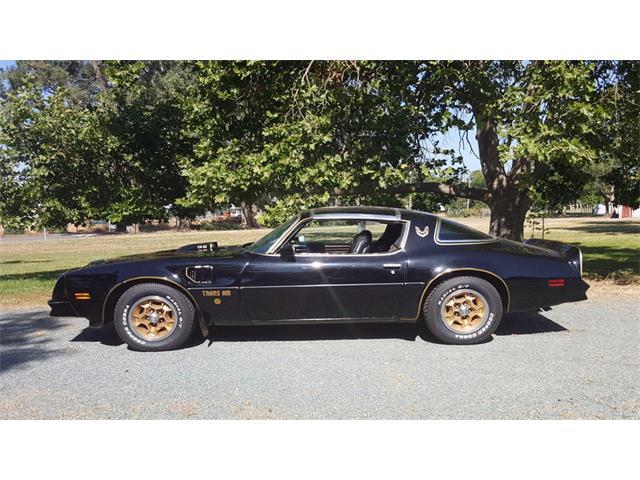 1976 Pontiac Firebird Trans Am | 879953
