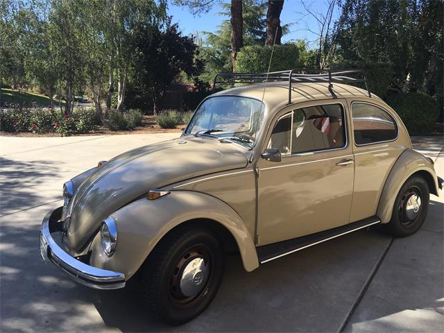 classifieds   volkswagen beetle