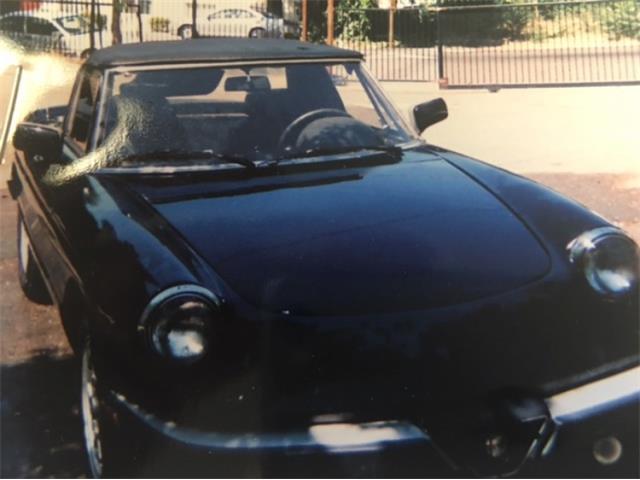 1987 Alfa Romeo Spider | 881529